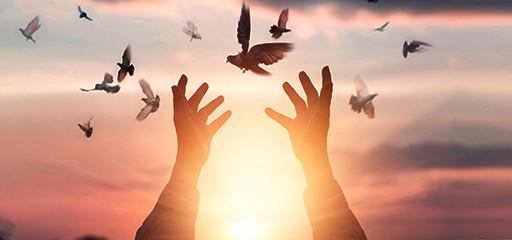 Zihni Özgürleştiren Meditasyon Atölyesi